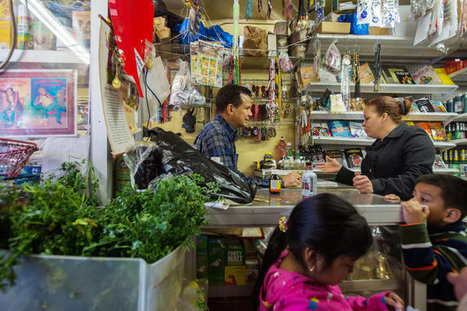 Wary of Mainstream Medicine, Immigrants Seek Remedies From Home | Erba Volant - Applied Plant Science | Scoop.it