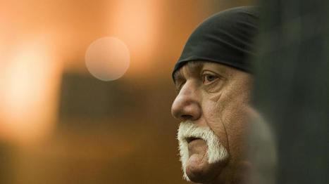 Jury awards Hulk Hogan $115 million in sex, celebrity and privacy case | Revenge and Involuntary Porn | Scoop.it