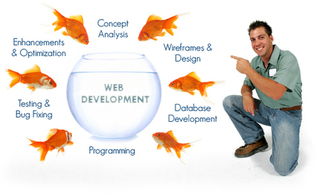 Web Development Company – Select Carefully | Web Whisperer : Solution Of Success | Scoop.it