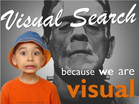 Visual Search, porque somos animales visuales, impacientes y curiosos | Noticias, Recursos y Contenidos sobre Aprendizaje | Scoop.it