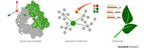 For Autodesk, a Step Into a Nanoscale World | SynBioFromLeukipposInstitute | Scoop.it