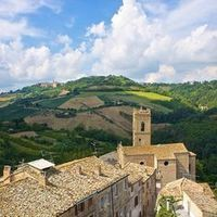 Le Marche, another Italy on Pinterest | Appassionata Truffles - black diamonds! | Scoop.it