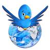Tout savoir sur Twitter