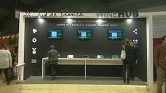 "Salon Vinisud Montpellier : Sud de France lance le ""wine hub"" - France 3 Languedoc-Roussillon 