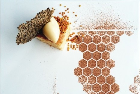 How Eating Insects Could Save The Planet   Insect protein   Scoop.it