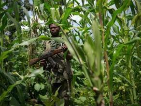 RDC : nouvelle coalition de Maï-Maï et de milices d'autodéfense dans le Sud-Kivu | Actualités Afrique de l'Ouest & Centrale | West & Central Africa news | Scoop.it