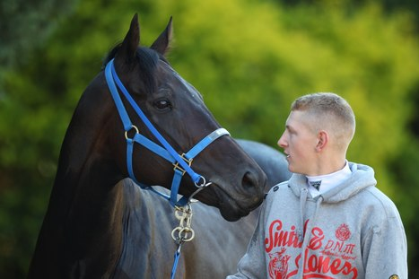 GALLERY: Black Caviar prepares to make history | Cheeky Marketing | Scoop.it