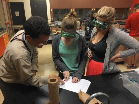 Gender gap closing as more Fox Valley girls studying science, math - Chicago Tribune   Aurora, Illinois, business   Scoop.it