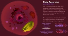 Animal, Plant and bacterial Cells | Animal and Plant cells | Scoop.it
