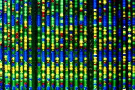 Q&A: Genome Pioneer Craig Venter Plans Largest Human Genome Project to Aid Longevity | Exploring Anthropology | Scoop.it
