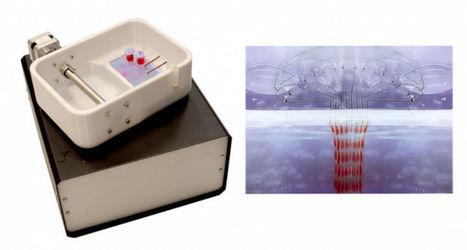 Cette bio-imprimante 3D peut imprimer des greffons de peau sur demande pour les grands brûlés | Newelly | Techno News | Scoop.it