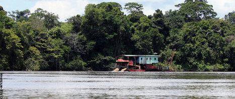 «COP21, orpillage, cynisme et pollution» Guyaweb | Guyane orpaillage illégal | Scoop.it