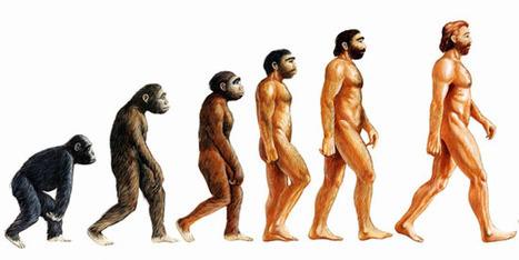 Little Understanding on Evolution   Classteacher   Mind Shaper Technologies   ClassTeacherLearningSystem   Scoop.it
