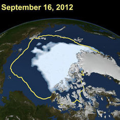 Arctic Sea Ice Loss Creates Ripple Effects: Scientific American | Sustain Our Earth | Scoop.it