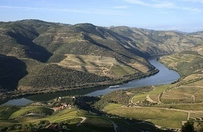 The Architecture of Hedonism: Port and the Douro Valley | Special Feature | Christie's | The Douro Index | Scoop.it