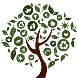 Inbound Marketing et développement durable, le couple gagnant? | Institut de l'Inbound Marketing | Scoop.it