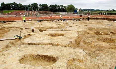 Celtic Cattle | Histoire et archéologie des Celtes, Germains et peuples du Nord | Scoop.it