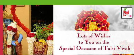 Lots of wishes to you on the special occasion of Tulsi Vivah. | BlossomSquare online flowers delivery system | Scoop.it