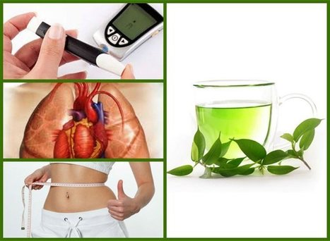 Things you didn't knew about green tea extract / DietKart Official Blog | Fitness | Scoop.it