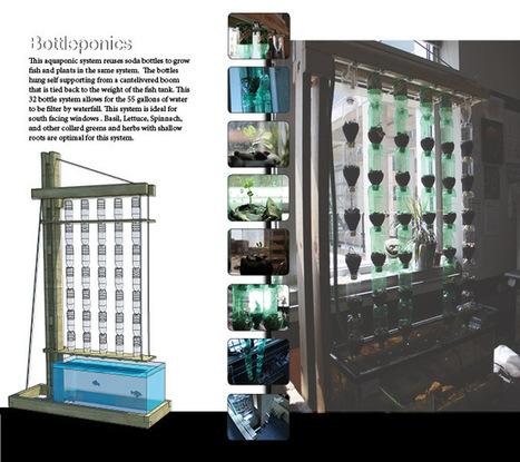 Bottleponics - Aquaponic Gardening | Wellington Aquaponics | Scoop.it
