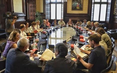 Junts pel Sí y la CUP desoyen el aviso del Constitucional sobre el proceso constituyente, Xabi Barrena | Diari de Miquel Iceta | Scoop.it