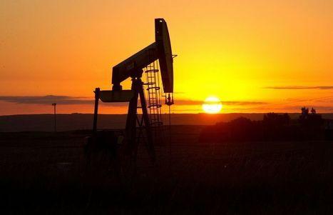 Le pétrole chute à son plus bas niveau en 5 ans | Performance | Scoop.it