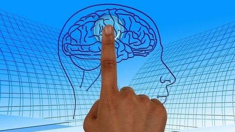 Pour pouvoir apprendre, le cerveau doit oublier   La Boîte à Neurones d'A3CV   Scoop.it