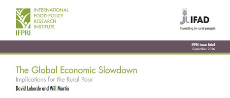 The global economic slowdown: Implications for the rural poor :: IFPRI Publications | IFPRI Research | Scoop.it