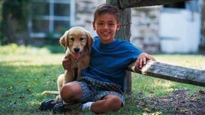 It's Dog Bite Prevention Week - here are some safety tips | Pet-Related News | Scoop.it