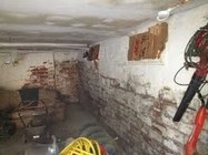 Getting Rid Of Mold In Basement | Urfresh | Scoop.it