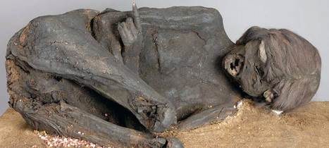 Examination shows blunt force trauma to skull of mummy | Archaeology News | Scoop.it