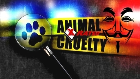 Anonymous Shuts Down Worlds Largest X-Rated Animal Abuse Forum | anonymous activist | Scoop.it
