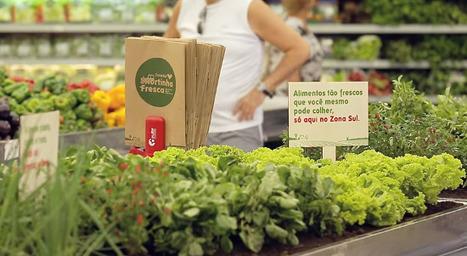 Ils font pousser des légumes dans les rayons / Les actus / LA DISTRIBUTION - LINEAIRES, le magazine de la distribution alimentaire | Startup et innovation | Scoop.it