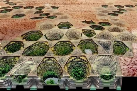 Des projets pour lutter contre la désertification   Efficycle   Scoop.it