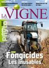 Internet : des conseils pour augmenter la visibilité de votre site - Actualités - La Vigne, le magazine du monde viticole, de la viticulture et du vin | Vin, blogs, réseaux sociaux, partage, communauté Vinocamp France | Scoop.it