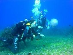 Great Scuba Diving Destinations Around the World | Lets Get Wet - Scuba and Ocean News | Scoop.it