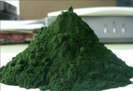 Chlorella: removes mercury and heavy metals from the body, and much more (great in smoothies)- The Gaia Health Blog | Chlorella | Scoop.it