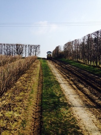 Solar Farm - Littles Manor - Appeal Details   Safeguarding Faversham's Future   Kent County UK   Scoop.it