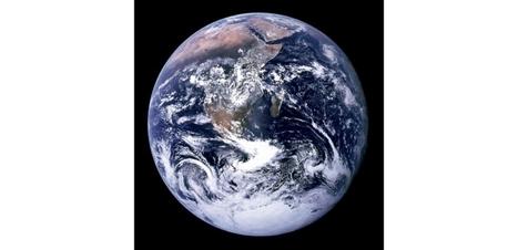 La perte de biodiversité menace les écosystèmes de la planète | décroissance | Scoop.it