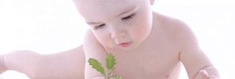 Trop de pollution tue le QI de nos bébés ! | Toxique, soyons vigilant ! | Scoop.it