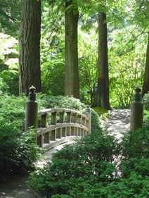 Molly Hashimoto: Portland Japanese Garden's Big Trees | Japanese Gardens | Scoop.it
