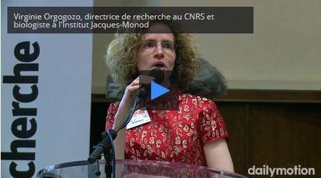 Virginie Orgogozo, évolutionniste modèle | Veille Scientifique Agroalimentaire - Agronomie | Scoop.it