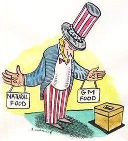 California genetic food vote is no victory for science - New Scientist (2012) | Ag Biotech News | Scoop.it