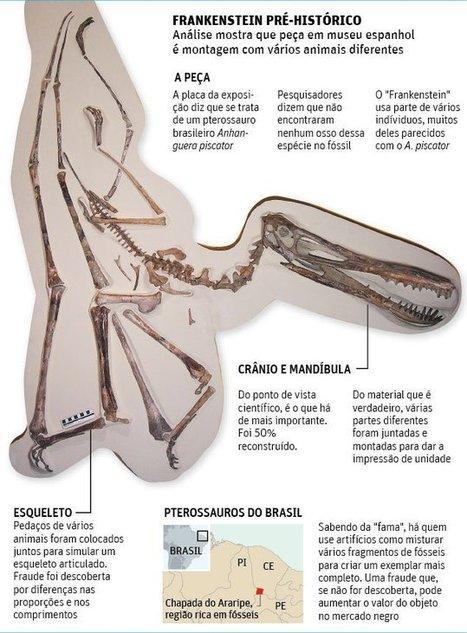 Un fósil 'de pega' en Cosmocaixa   Paleontología   Scoop.it