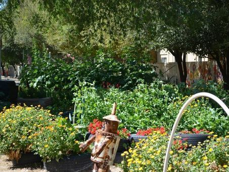3/14: Real Gardens for Real People Tour of West Valley | Arizona Republic | CALS in the News | Scoop.it