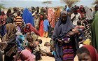 Famine to be declared in Horn of Africa unless more food is sent to area - Telegraph | Climate change challenges | Scoop.it