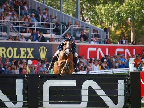BEST WESTERN PREMIER Freeport Inn & Suites: World's Best Show Jumpers Compete at Spruce Meadows Masters Tournament, Sept.4-8 | Travel | Scoop.it
