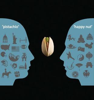 El contacto con la cultura materna hace perder fluidez al hablar un idioma extranjero / Noticias / SINC | Vivir en los pronombres | Scoop.it