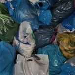 How to Recycle Plastic Bags for Cash | eHow | Things You Should Know About Plastic Bags | Scoop.it