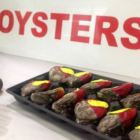 SA company develops machine to ensure longer-lasting oysters | Aquaculture Directory | Scoop.it